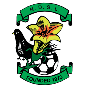 North Dublin Schoolboy League